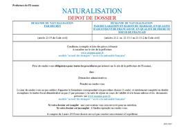Naturalisation Dépôt De Dossier Actualités Accueil